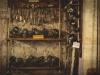 Museo della pesca-16
